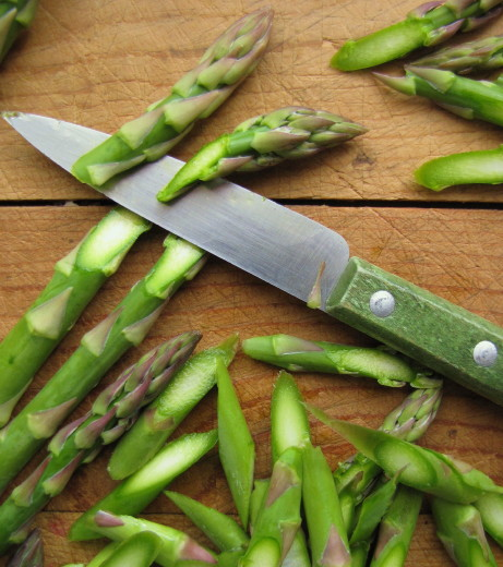 So I'm going to ignore my mother (who claims I tend to get a bit fussy about my vegetable cuts), and suggest that you try slicing your asparagus on the ...