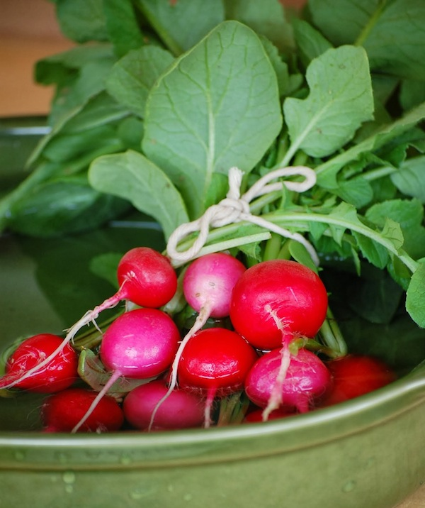 radish bunch green island farm 1